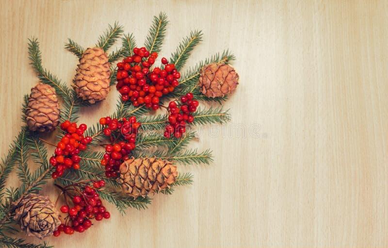 Rama de árbol de navidad imagen de archivo