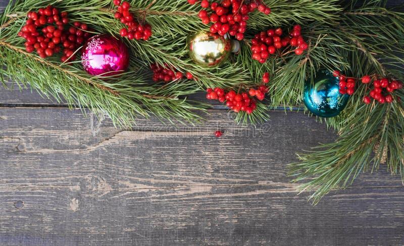 Rama de árbol de navidad imagen de archivo libre de regalías