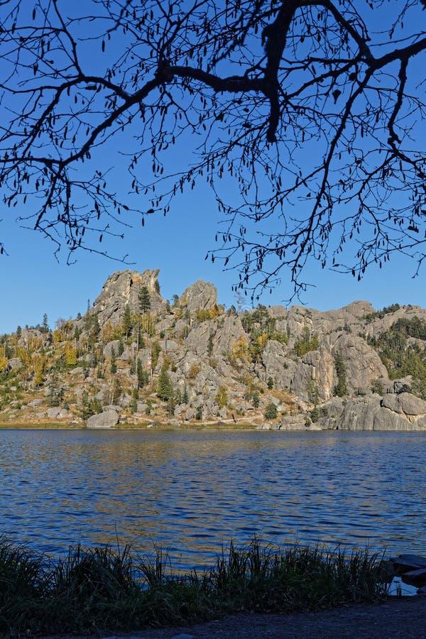 Rama de árbol sobre Sylvan Lake fotos de archivo