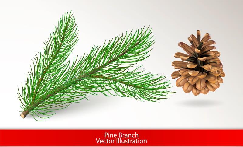 Rama de árbol verde realista de pino y cono marrón aislados en el fondo blanco Fije para el diseño Ilustración del vector stock de ilustración