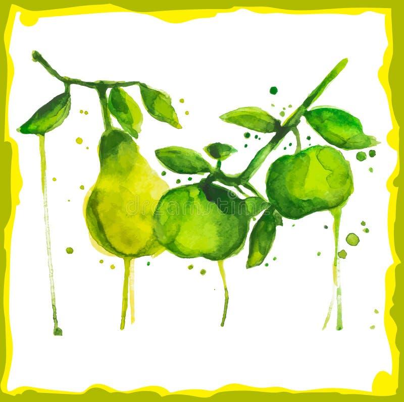 Rama de la acuarela con las peras y las manzanas stock de ilustración