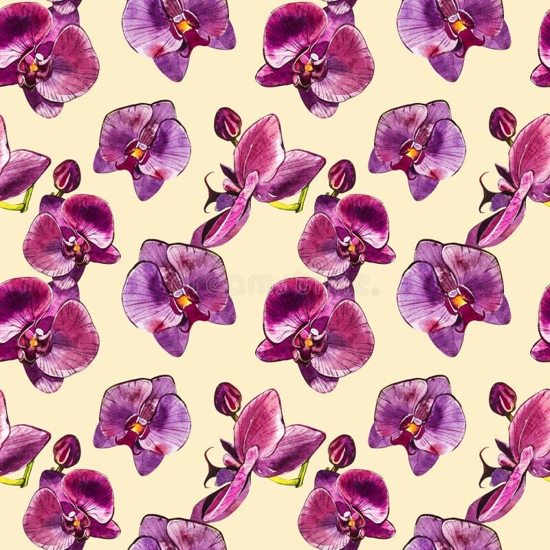 Rama de la orquídea de la acuarela, fondo inconsútil floral exhausto del modelo de la mano Ejemplo de la acuarela de la flora, bo ilustración del vector