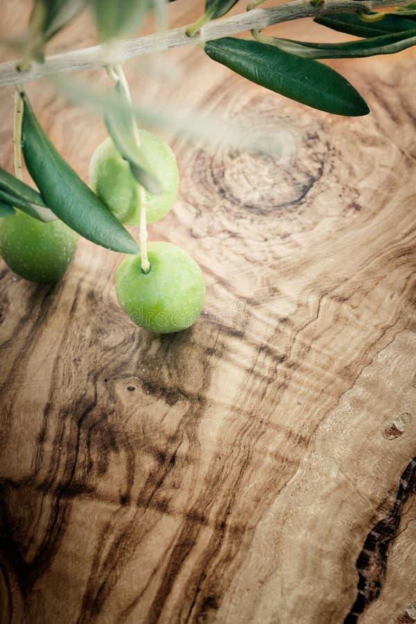 Rama de olivo en fondo de madera verde oliva imagen de archivo libre de regalías