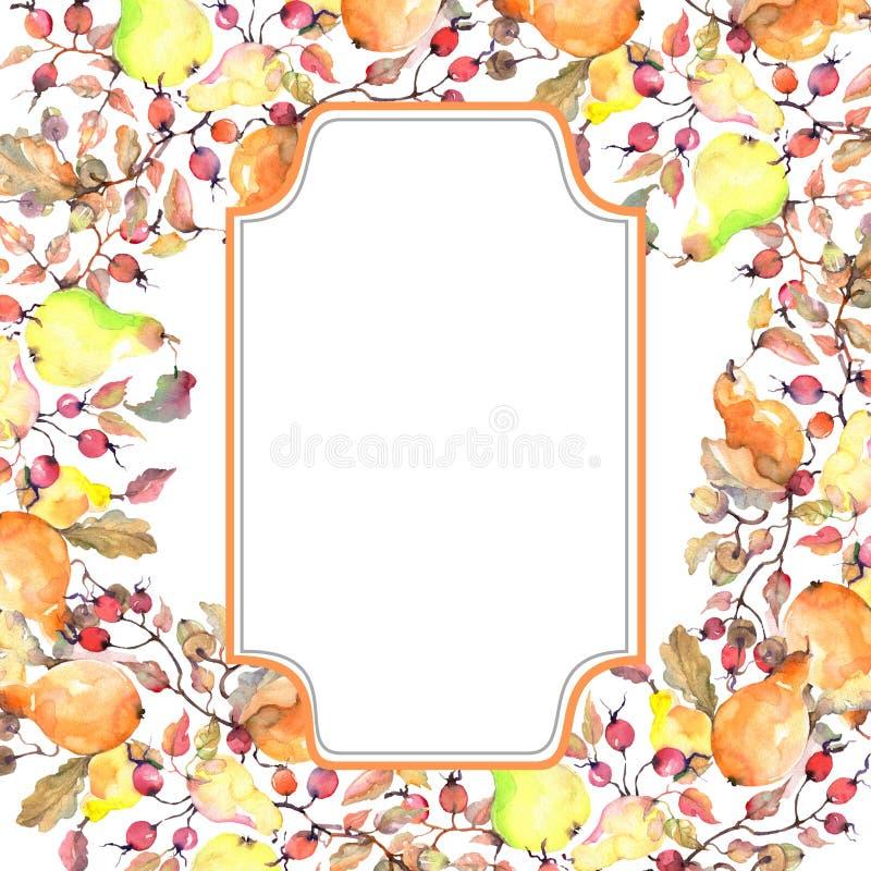 Rama de peras con la fruta de los escaramujos Sistema del ejemplo del fondo de la acuarela Cuadrado del ornamento de la frontera  stock de ilustración