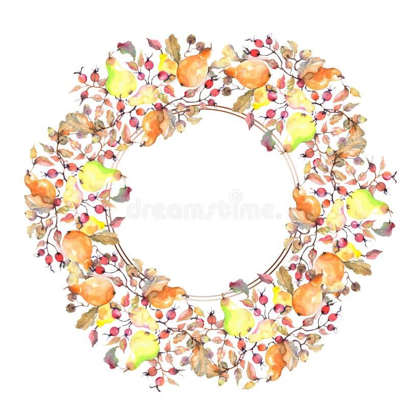 Rama de peras con la fruta de los escaramujos Sistema del ejemplo del fondo de la acuarela Cuadrado del ornamento de la frontera  libre illustration