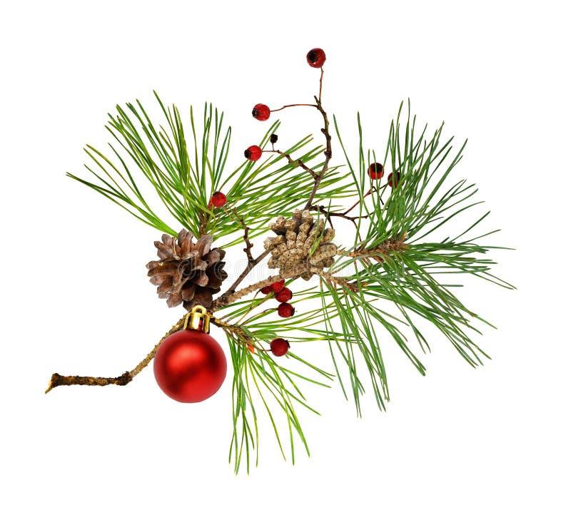 Rama de pino con conos, decoración navideña y bayas secas rojas foto de archivo