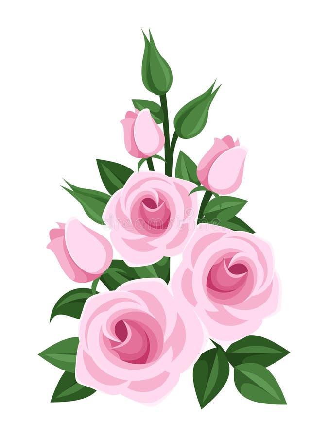 Rama de rosas, de brotes y de hojas rosados. stock de ilustración