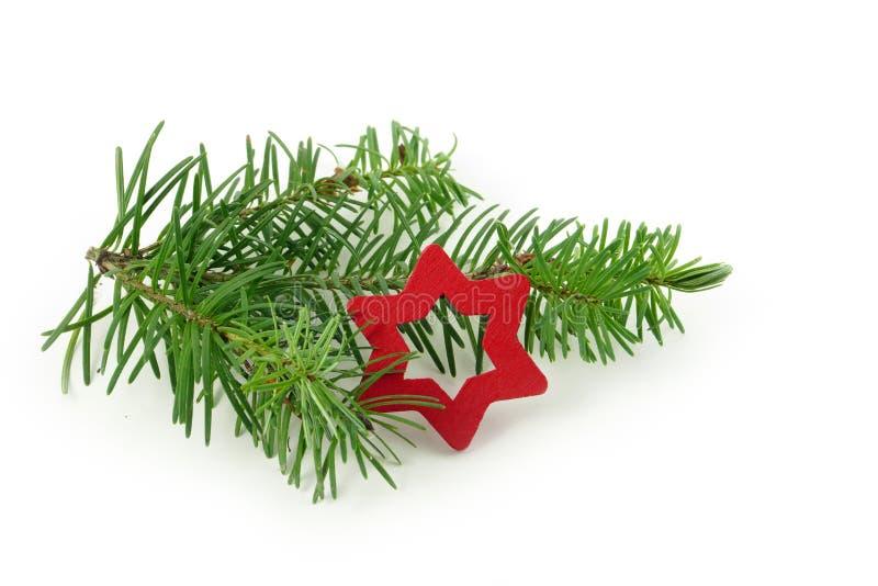 Rama del abeto con la pequeña estrella roja de la Navidad, aislada en la parte posterior del blanco fotos de archivo libres de regalías