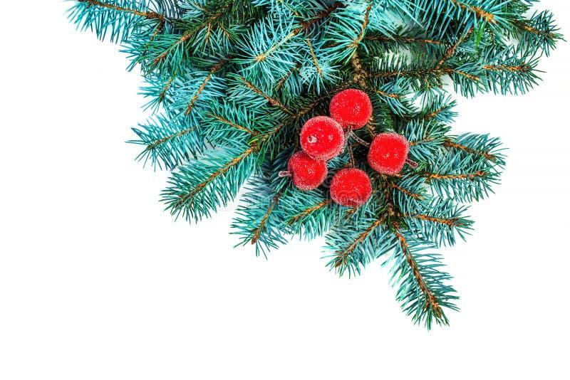 Rama del abeto con las decoraciones de la Navidad aisladas en el backgrou blanco imagen de archivo