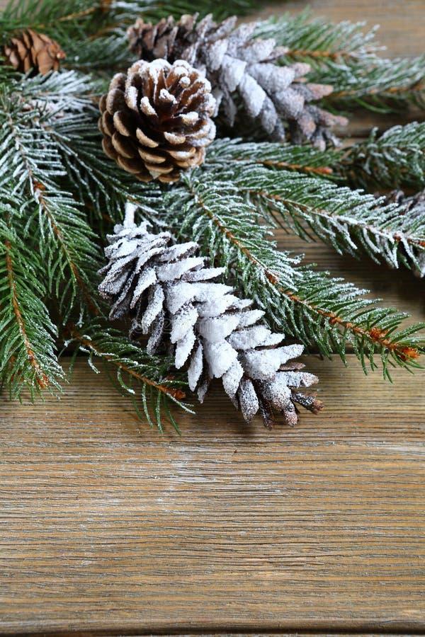 Rama del abeto de la Navidad cubierta con nieve artificial en tableros imágenes de archivo libres de regalías