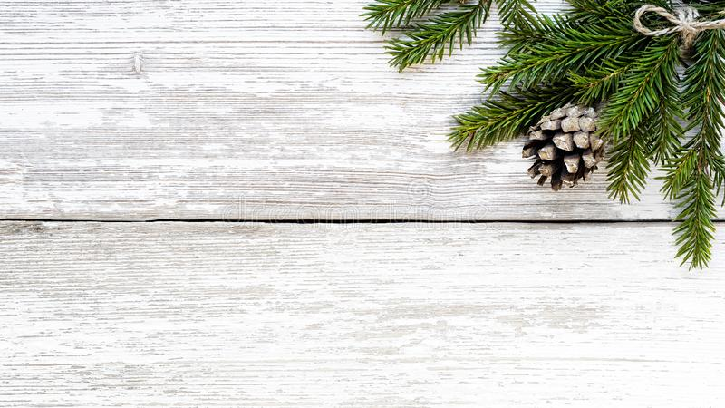 Rama del abeto y cono del pino en el tablón de madera blanco fotos de archivo