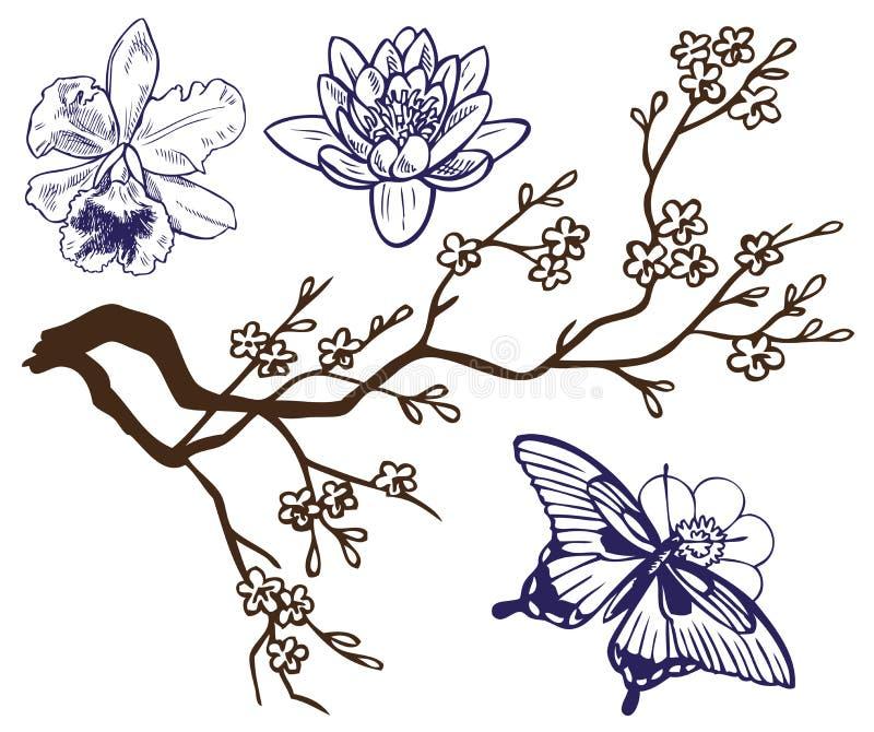 Rama del dibujo con las flores y las mariposas ilustración del vector