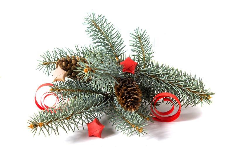 Rama del pino con los conos y las decoraciones del papel aisladas foto de archivo libre de regalías