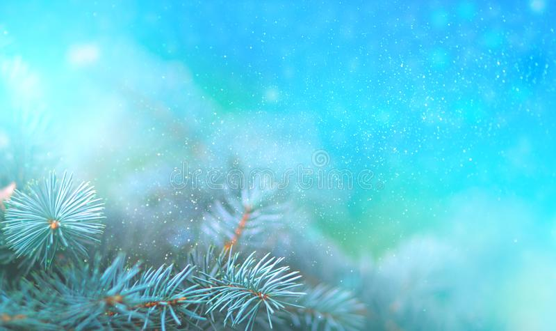 Rama del pino de la Navidad en los rayos del cierre ligero para arriba, del fondo azul con reflexiones de estrellas y del bokeh h stock de ilustración
