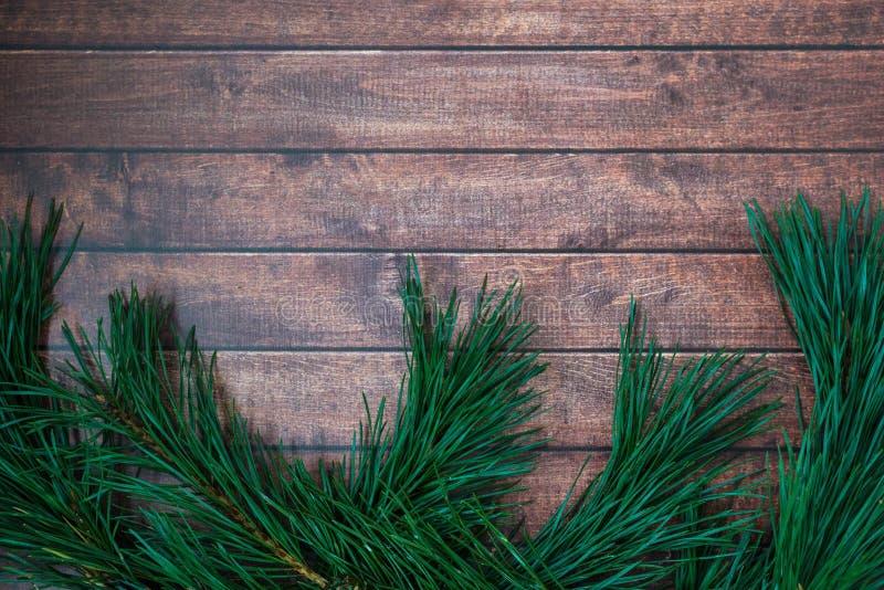 Rama del pino en fondo de madera imagen de archivo