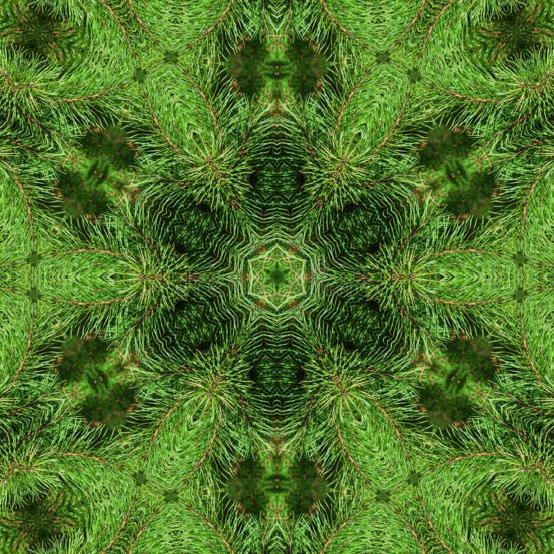 Rama del pino mullido verde libre illustration