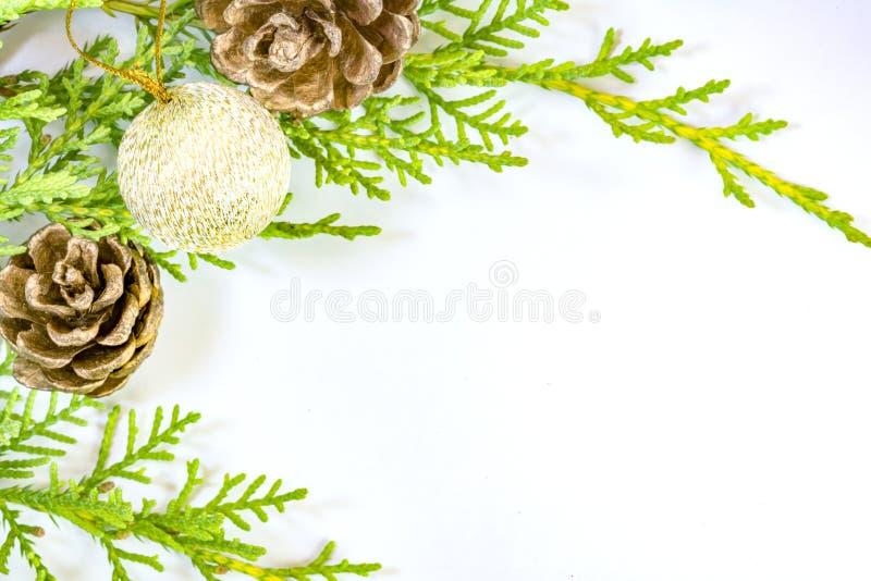 Rama del pino, pinecones y ornamento brillante del oro en blanco foto de archivo