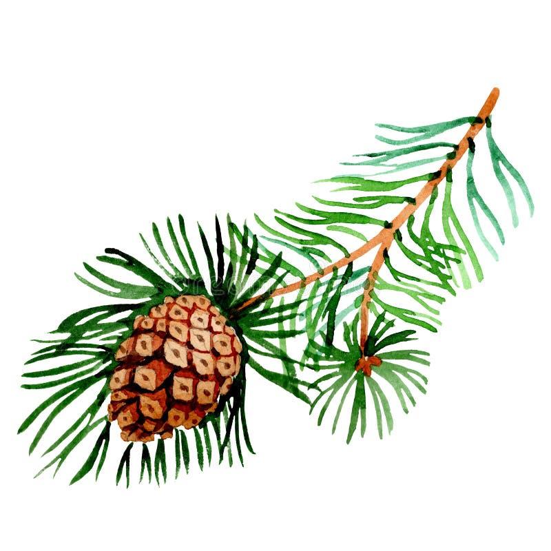 Rama del pino Símbolo de las vacaciones de invierno de la Navidad en un estilo de la acuarela aislado 2019 años stock de ilustración