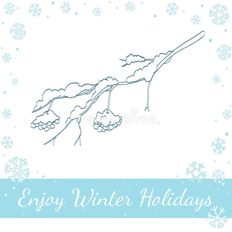 Rama del serbal del invierno Ilustración del vector ilustración del vector