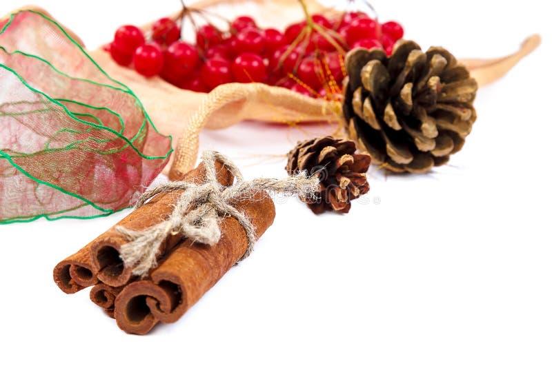 Rama del Viburnum con las bayas, los palillos de canela, los conos del pino y ri foto de archivo