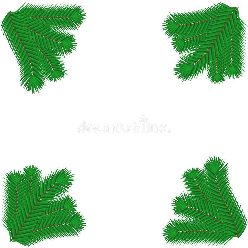 Rama enorme verde de la picea o del pino Rama de árbol de abeto aislada en el elemento de la Navidad blanca ilustración del vector