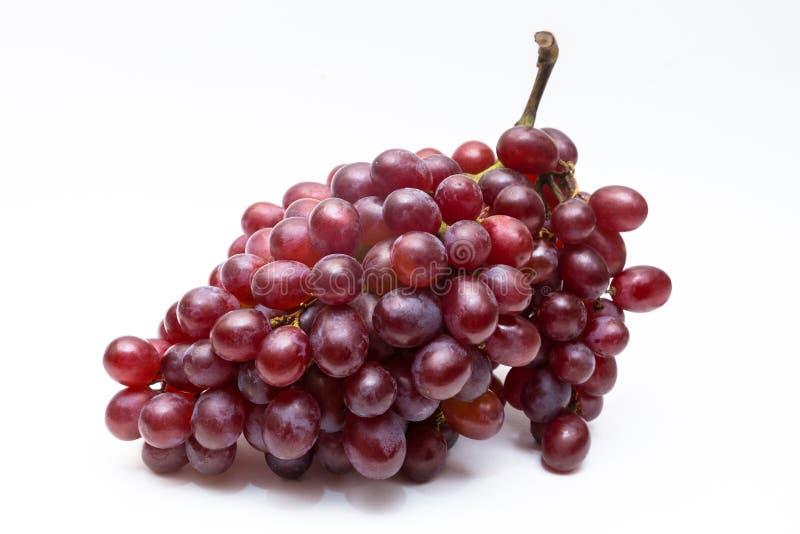 Rama fresca y sana de las uvas sin la hoja foto de archivo libre de regalías
