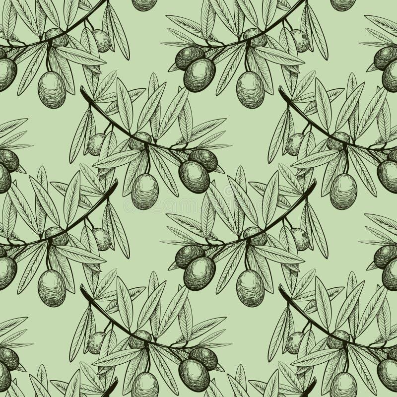 Rama inconsútil del bosquejo del modelo del olivo con las frutas ilustración del vector