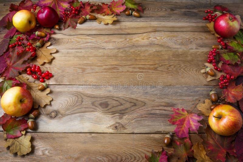 Rama jabłka, acorns, jagody i spadek, opuszcza na ciemny drewnianym zdjęcia stock