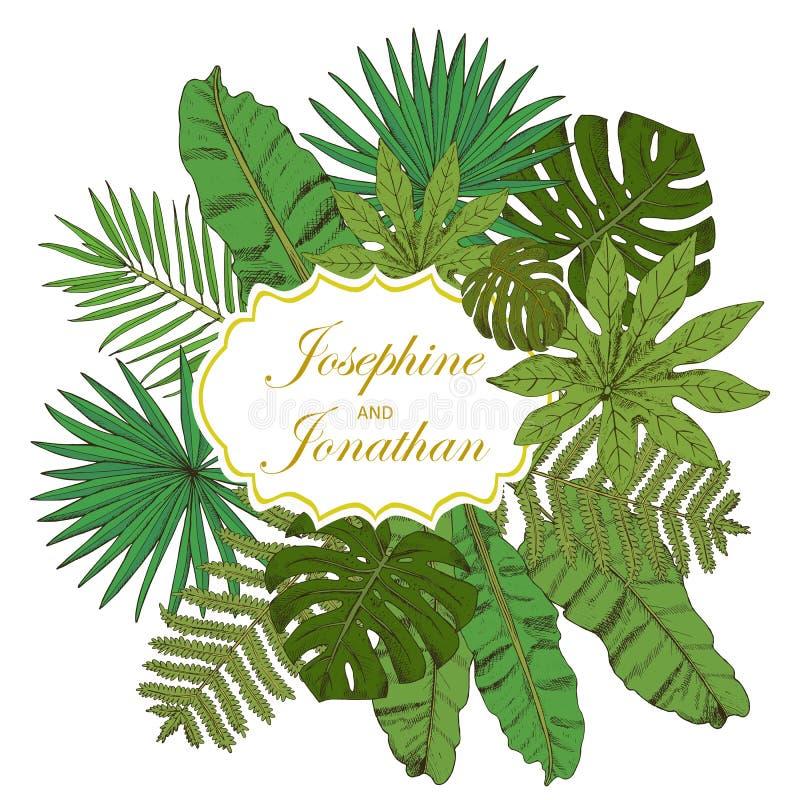 rama kwiecista wrobić serii Kolekcja z tropikalnymi liśćmi w nakreślenie stylu de ilustracja wektor