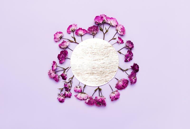 Rama menchie, purpura kwiaty Romantyczny, ślubny tło, dzie? kobiety s fotografia stock