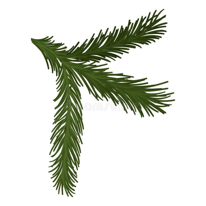 Rama mullida verde del pino con las agujas cortas Símbolo de la Navidad Tema de la naturaleza y de la botánica Icono plano del ve ilustración del vector