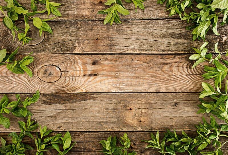 Rama od mennicy na starym drewnianym tle Wieśniaka styl policjant obrazy stock