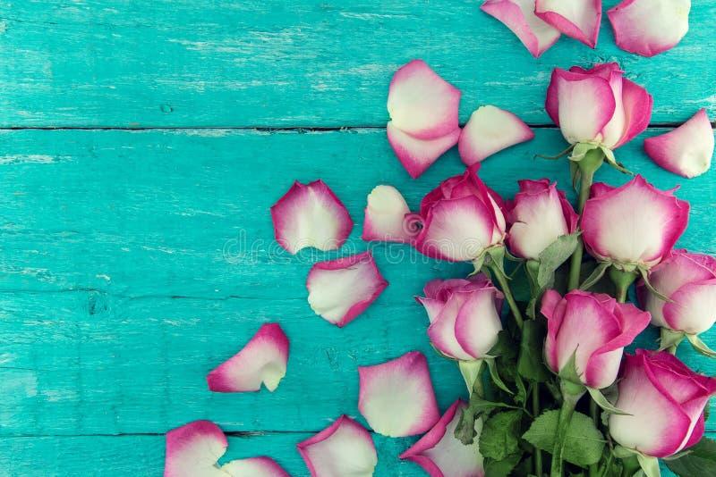 Rama różowe róże na turkusowym nieociosanym drewnianym tle z c obraz stock