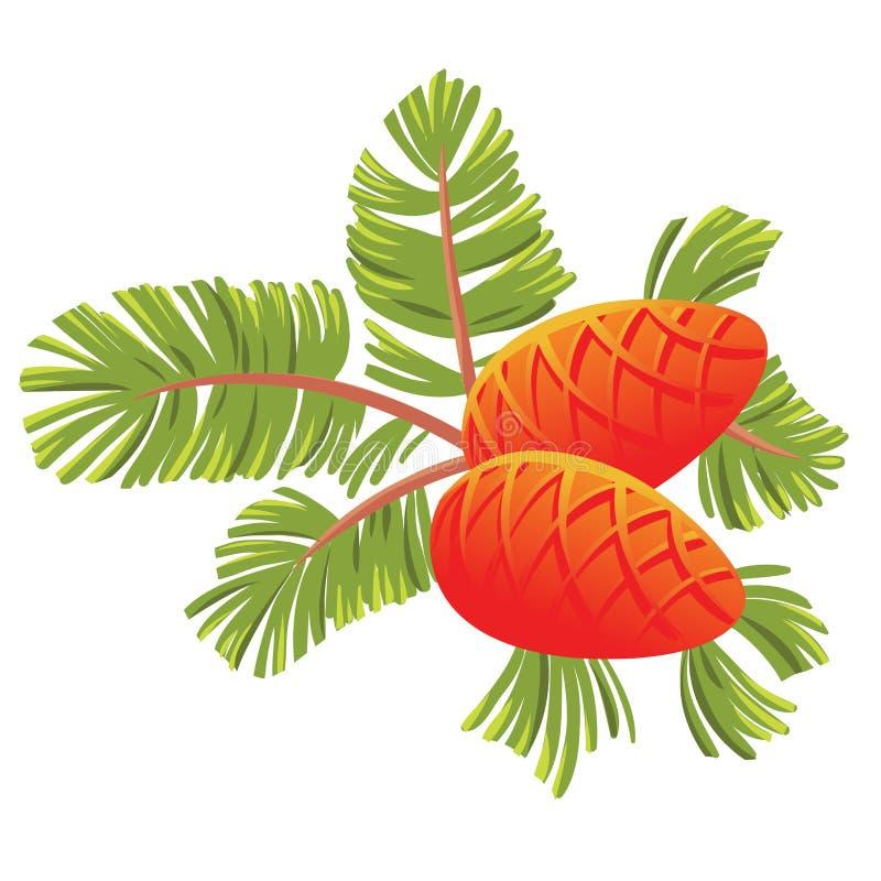 Rama spruce verde con dos conos Aislado en el ejemplo blanco libre illustration
