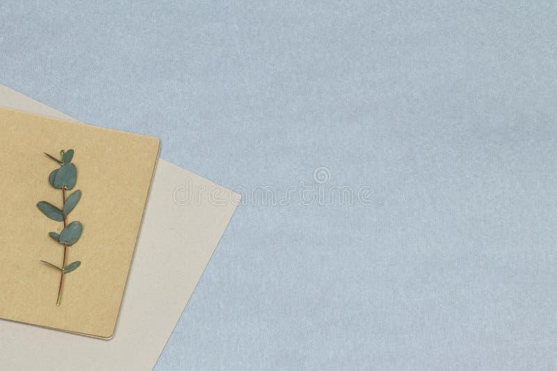 Rama verde del eucalipto, cuaderno, papeles en el fondo azul imágenes de archivo libres de regalías
