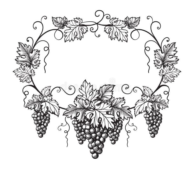 Rama winogrona monochromatyczny nakreślenie royalty ilustracja