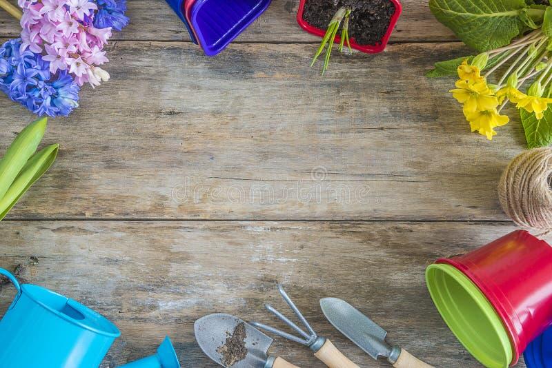 Rama wiosna kwiaty i ogrodnictw narzędzia obraz stock