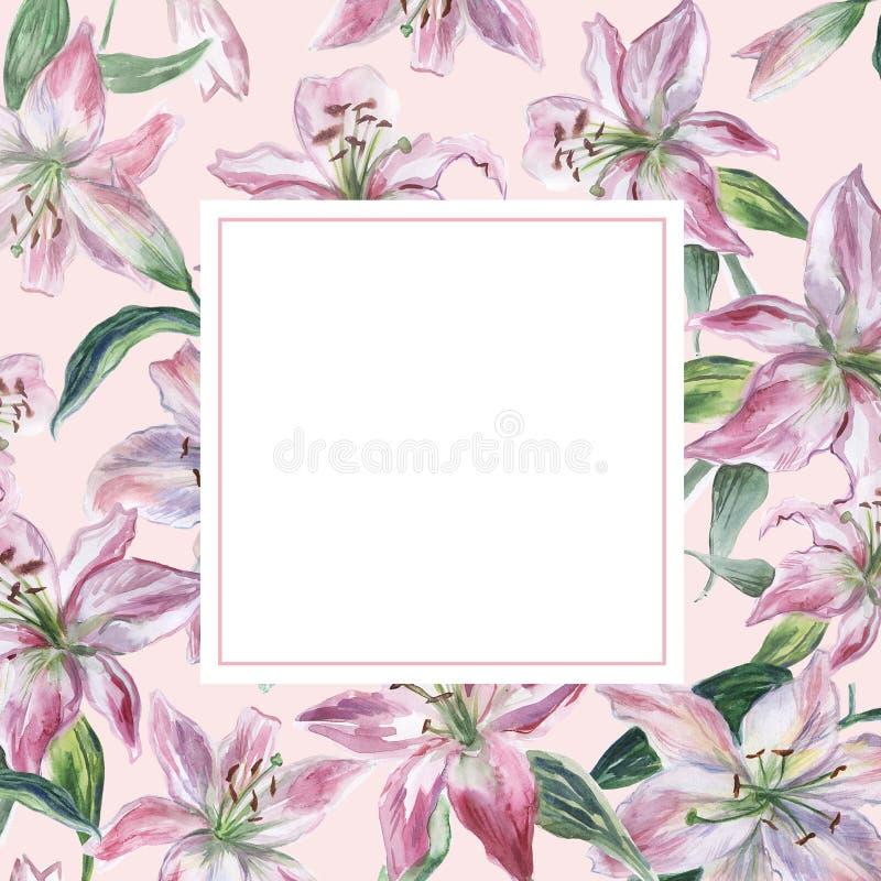 Rama z bielu i menchii akwareli lilys ilustracja wektor