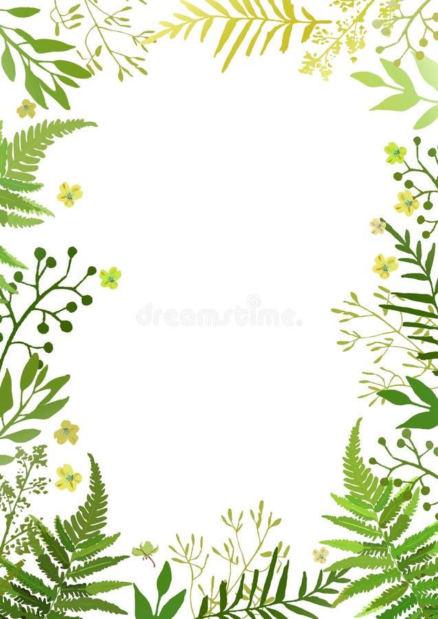 Rama z liśćmi Wektorowy kwiecisty set z ręki rysującymi zielonymi folia ilustracja wektor