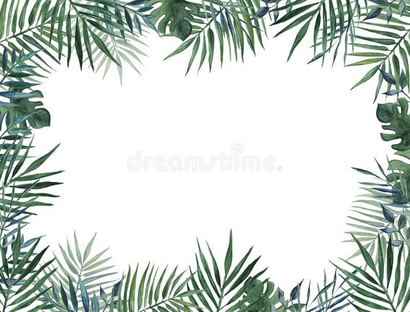Rama z palma liśćmi beak dekoracyjnego latającego ilustracyjnego wizerunek swój papierowa kawałka dymówki akwarela royalty ilustracja