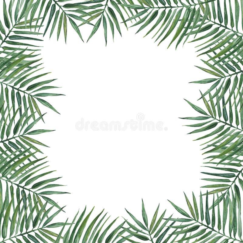 Rama z palma li??mi beak dekoracyjnego lataj?cego ilustracyjnego wizerunek sw?j papierowa kawa?ka dym?wki akwarela ilustracji