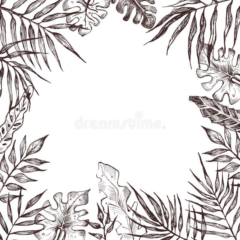 Rama z palma li??mi szczotkarski w?giel drzewny rysunek rysuj?cy r?ki ilustracyjny ilustrator jak spojrzenie robi pastelowi trady royalty ilustracja