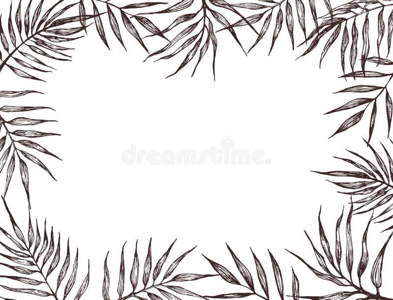 Rama z palma li??mi szczotkarski w?giel drzewny rysunek rysuj?cy r?ki ilustracyjny ilustrator jak spojrzenie robi pastelowi trady ilustracji