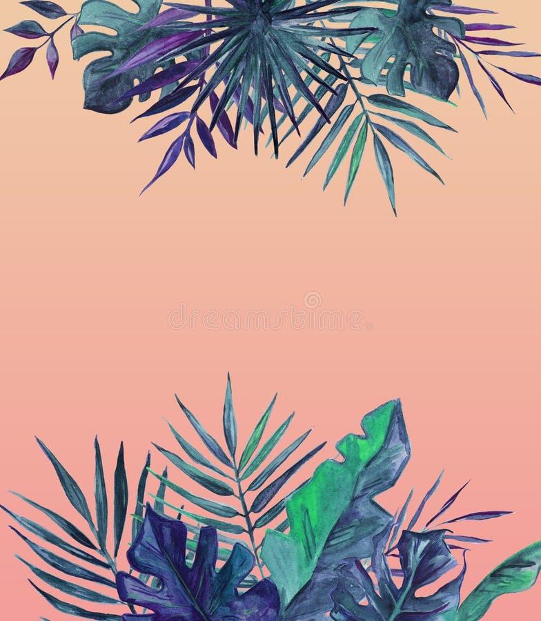 Rama z palmami opuszcza na r??owym tle Dla kartki z pozdrowieniami, ?lubny zaproszenie beak dekoracyjnego lataj?cego ilustracyjne ilustracji