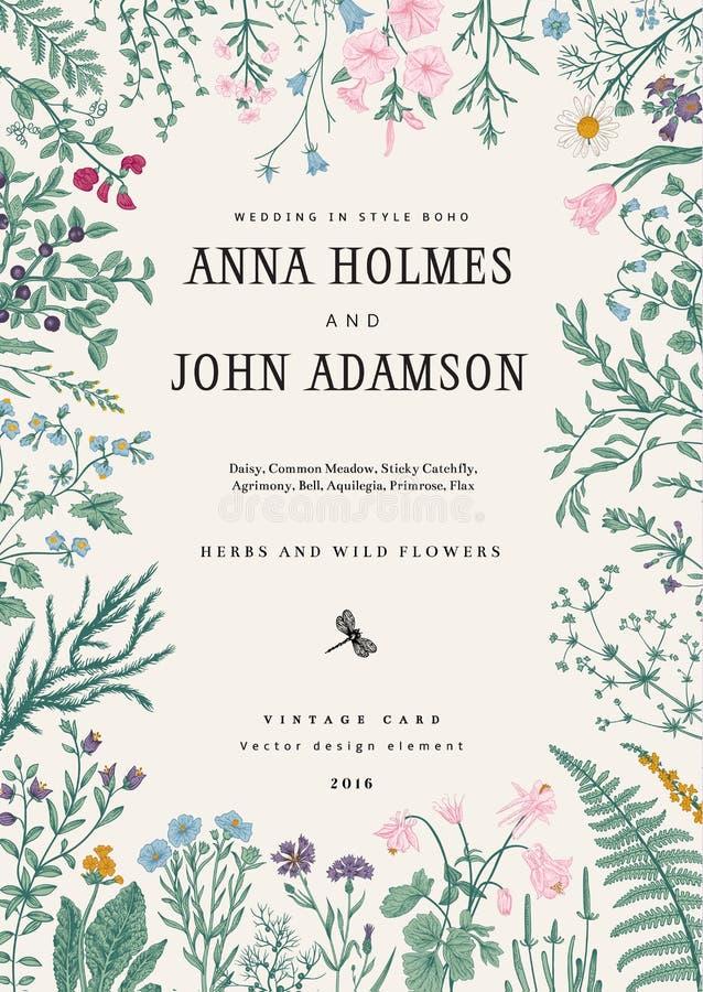 Rama ziele i dzicy kwiaty royalty ilustracja