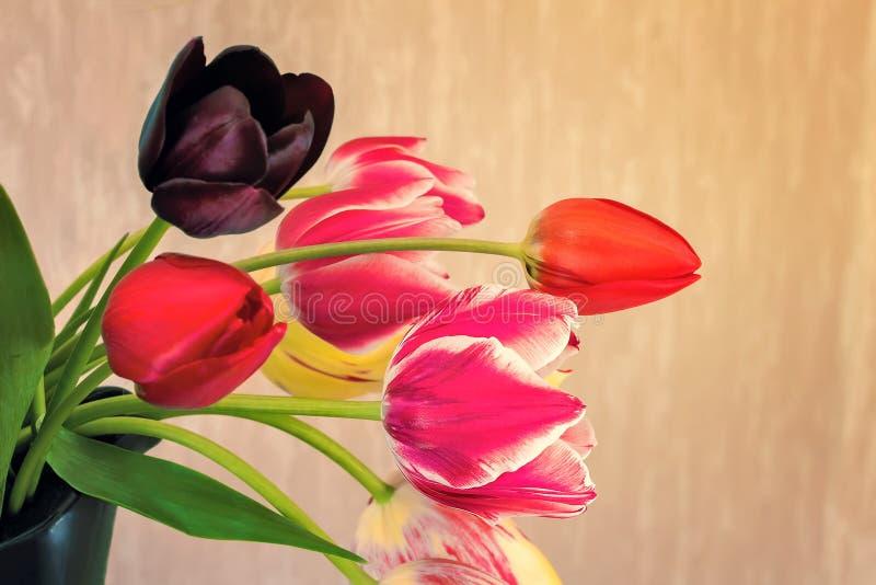 Ramalhete bonito das tulipas em um vaso cerâmico imagem de stock