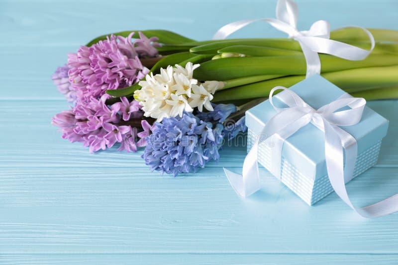 Ramalhete bonito de flores do jacinto no rosa, em cores azuis, brancas, violetas e na caixa de presente azul no fundo de madeira  foto de stock