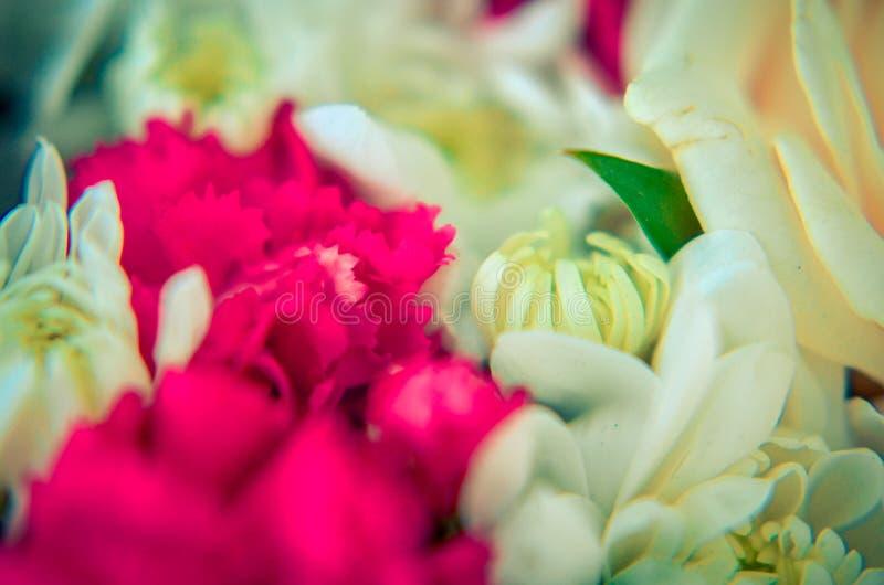 Ramalhete bonito de flores misturadas dos crisântemos, dos cravos-da-índia e das rosas imagens de stock royalty free