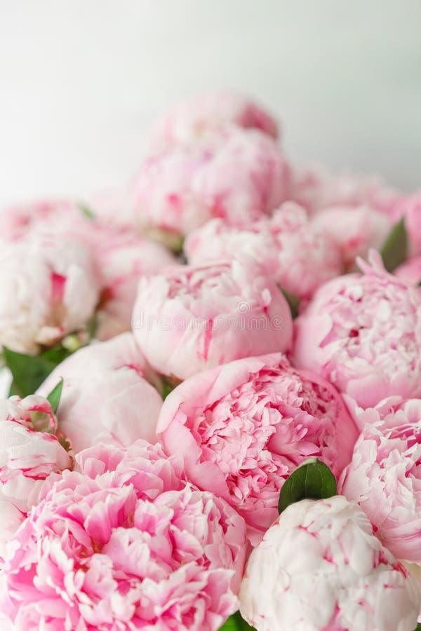 Ramalhete bonito de peônias cor-de-rosa Composição floral, luz do dia wallpaper Flores bonitas no vaso de vidro fotografia de stock