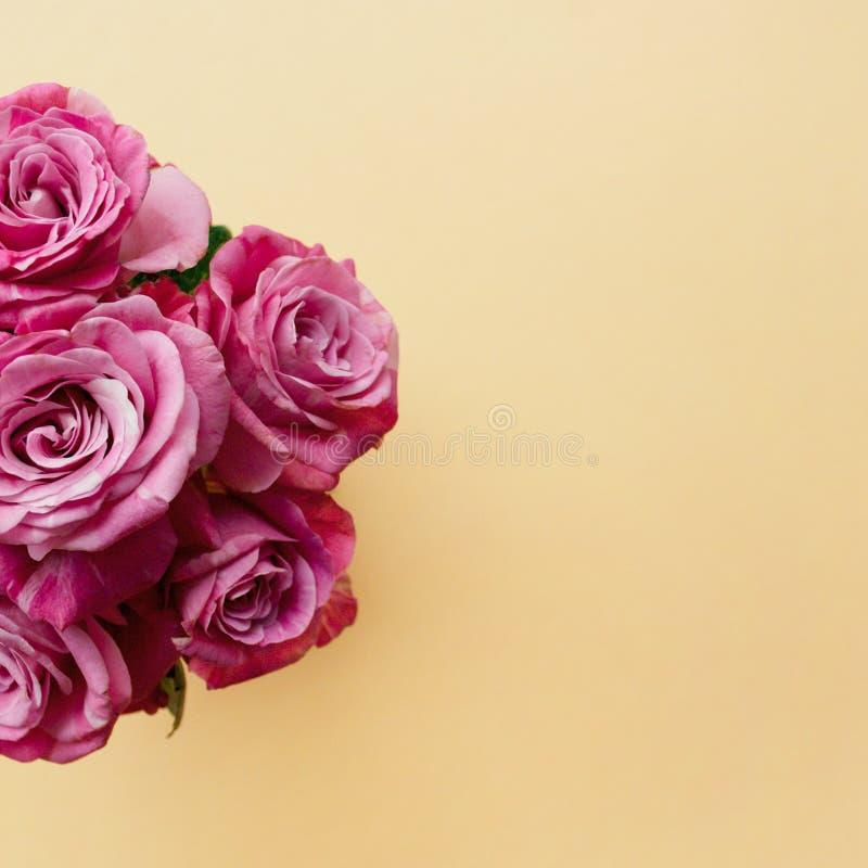 Ramalhete bonito de rosas cor-de-rosa em um fundo pálido da cor pastel do pêssego imagens de stock